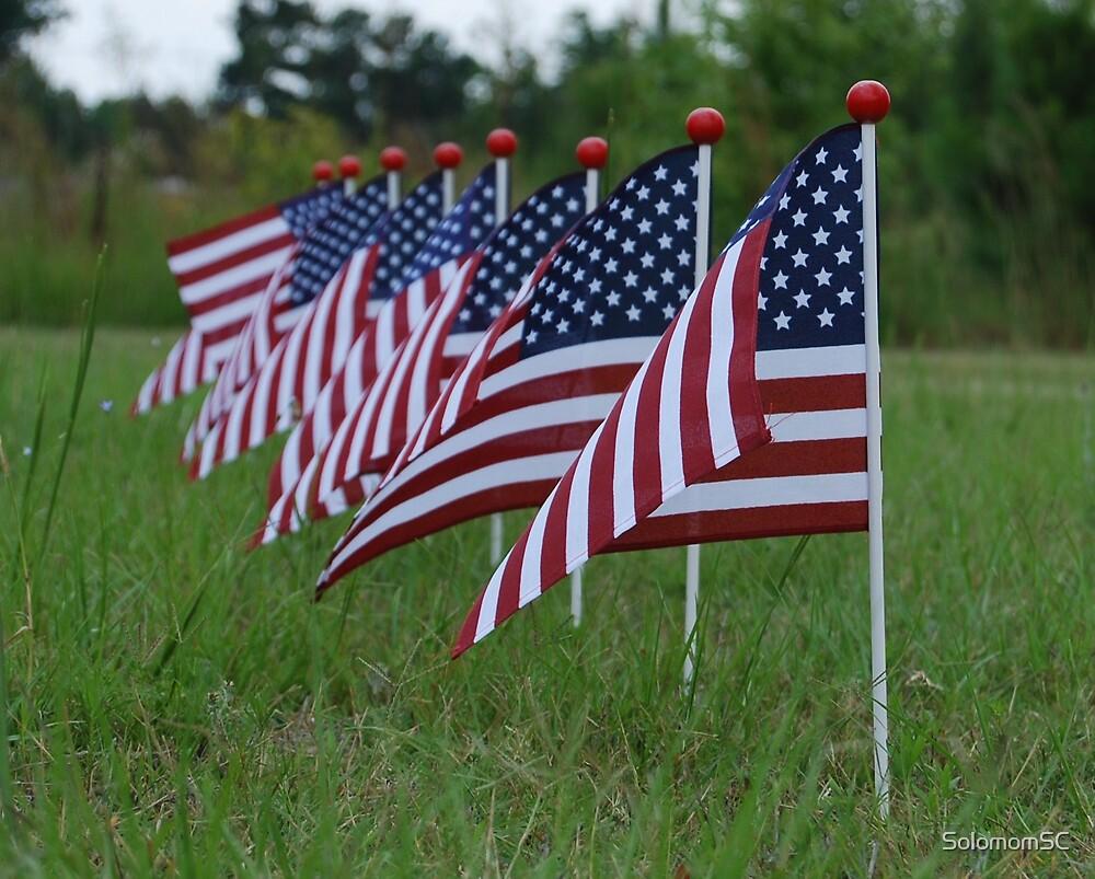 American Flag  by SolomomSC
