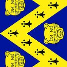 Shropshire Flag Phone Cases by mpodger