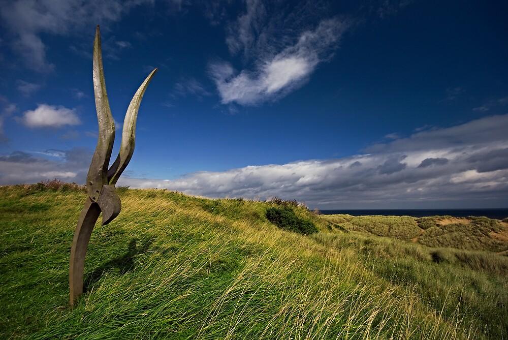 Natural Habitat by Gary Tumilty