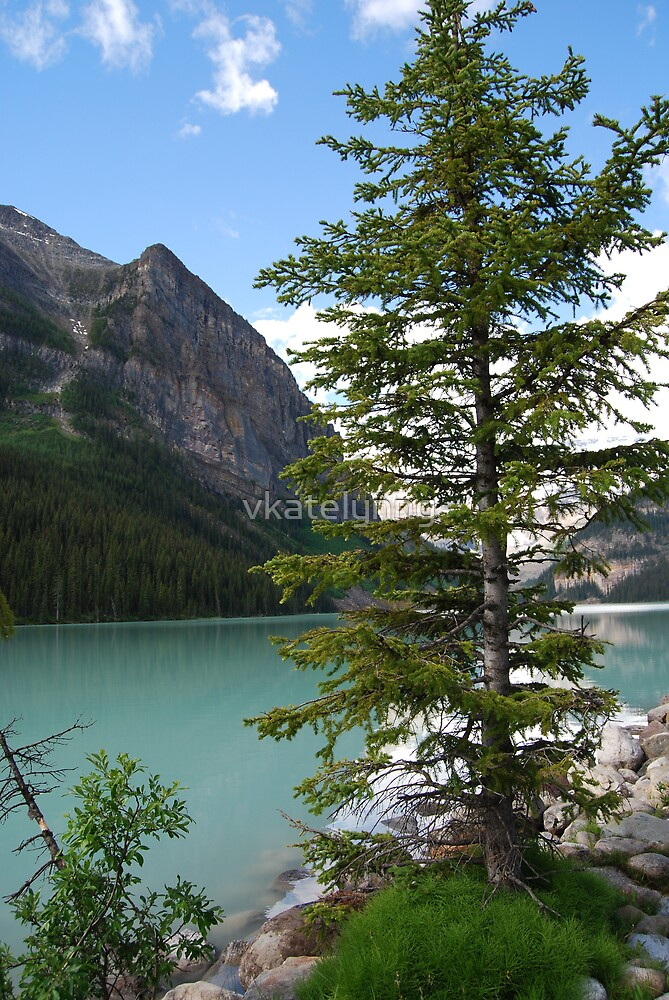 Lake Louise, Banff Alberta by vkatelynng