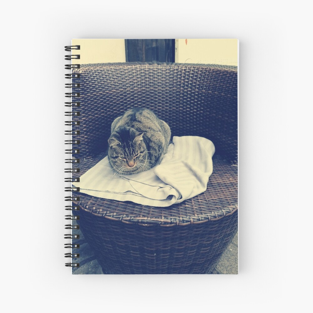 Relaxed kitten; lounging cat; the local kitten, house cat Spiral Notebook