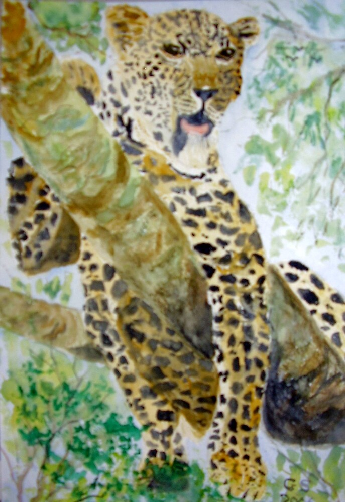 Leopard Resting by GEORGE SANDERSON