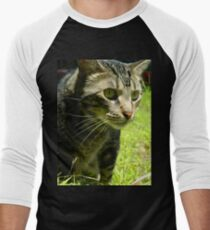 Curious cat on the prowl T-Shirt
