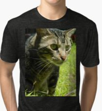 Curious cat on the prowl Tri-blend T-Shirt