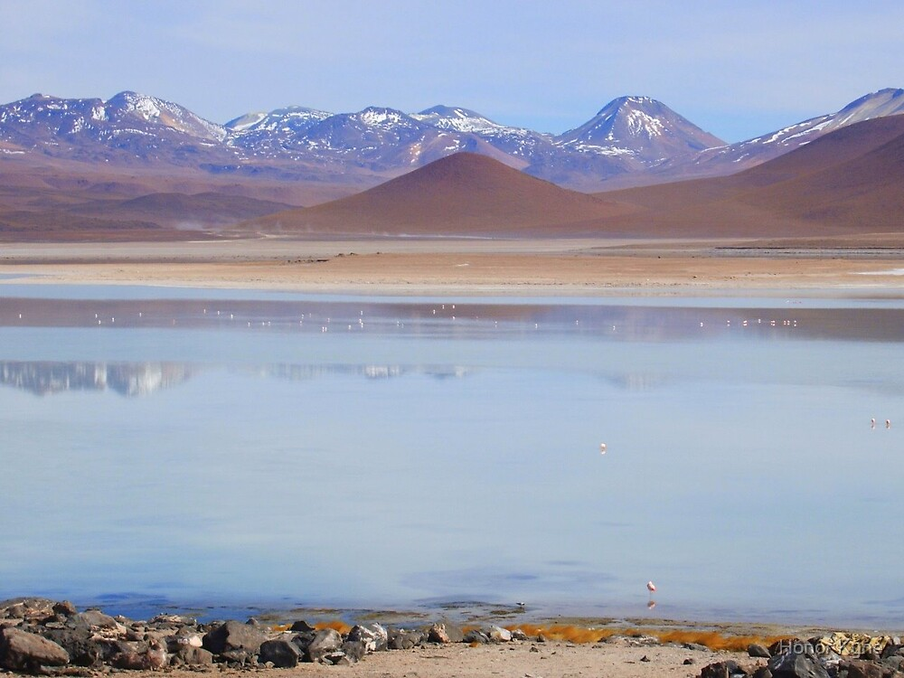 Snowy Mountains, Lakes and Flamingoes by Honor Kyne