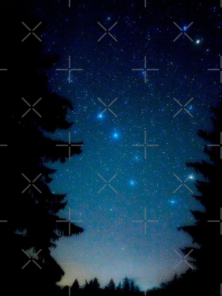 Großer Wagen Constellation von carlacardello