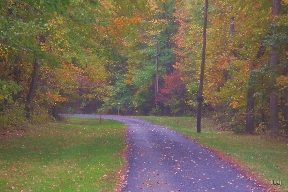 country road by lisaj