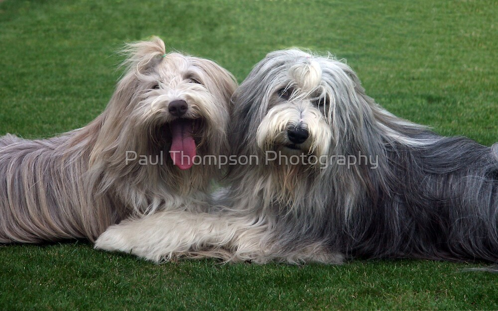 Look @ us by Paul Thompson Photography