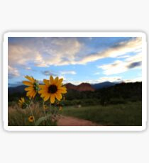 Summer Wildflowers #3 Sticker