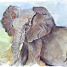 Africa's Wonder by Maree Clarkson