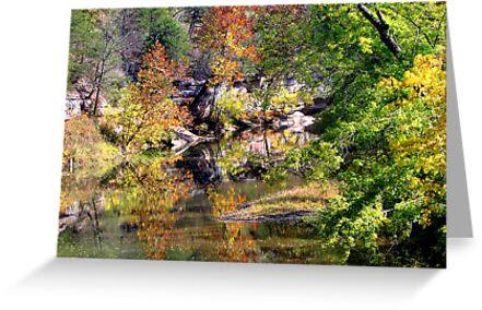 ~Reflecting Autumn~ by NatureGreeting Cards ©ccwri