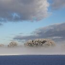 Winter and morning fog by Peter Voerman
