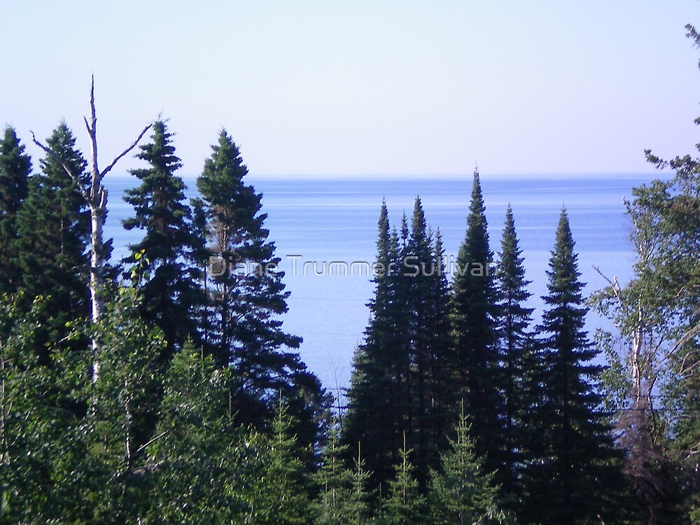 The GREAT Lake superior Northern Minnesota ~ USA by Diane Trummer Sullivan