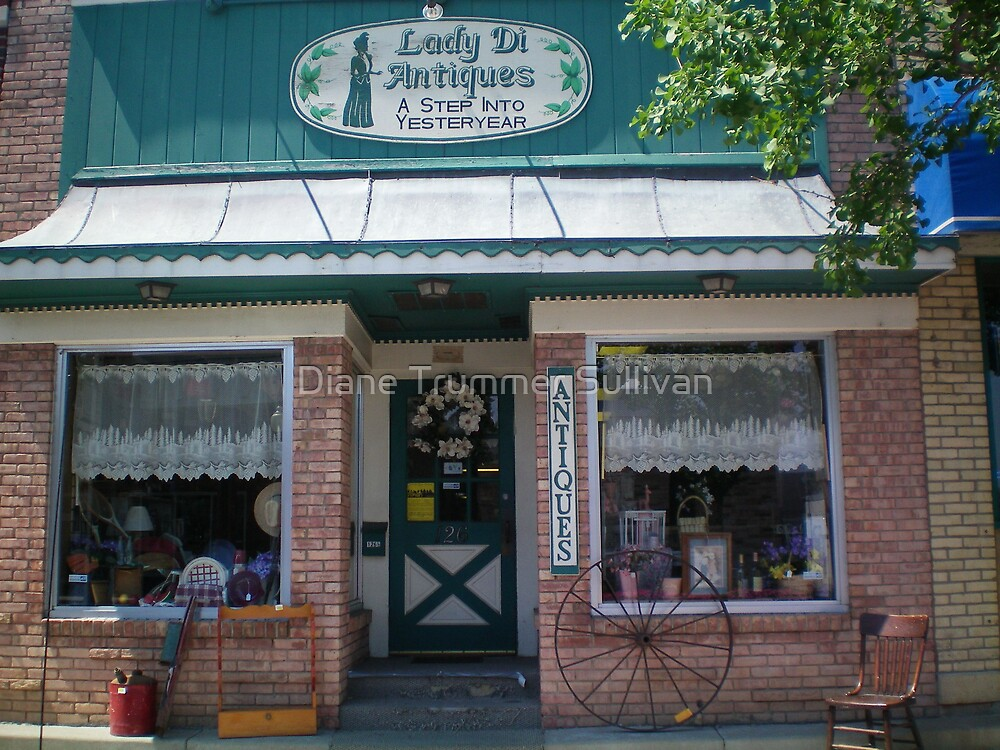 Small Town America Shop by Diane Trummer Sullivan