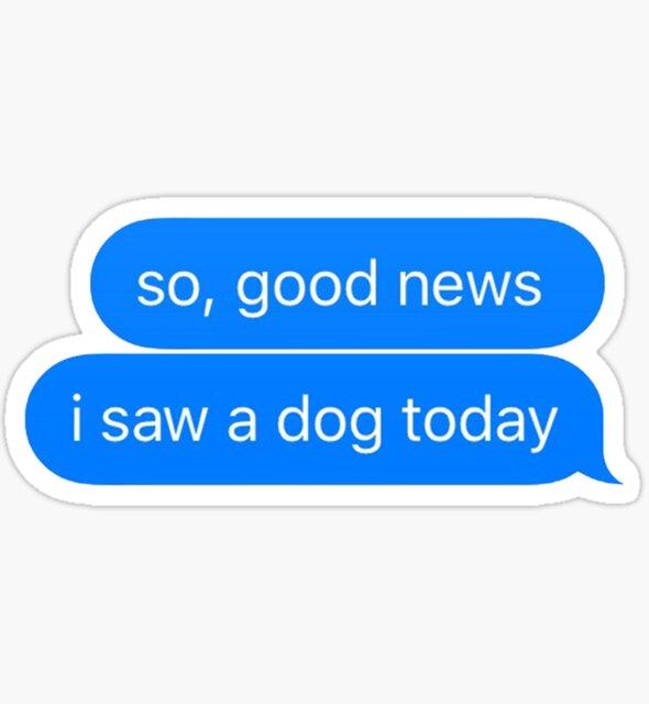 good news i saw a dog today by Christy Fox