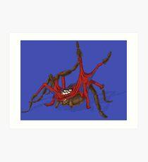 Spider Spider Art Print