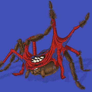 Spinnen Spinne von vomaria
