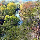 River Runs Through, War Eagle River by NatureGreeting Cards ©ccwri