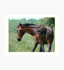 Flippant Horse Art Print