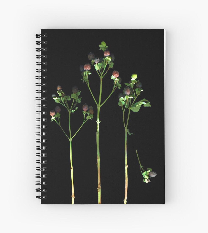 Bemused Berries Dark Floral by LindasPhotoArt