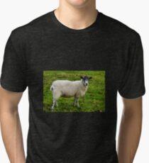 I.m Watching Ewe..........  Tri-blend T-Shirt