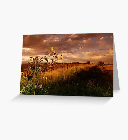 Colorado Farm Land III Greeting Card