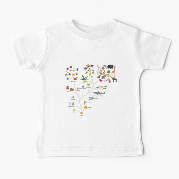Evolution in biology, scheme evolution of animals isolated on white background. children's education, science. Evolution scale from unicellular organism to mammals. Baby T-Shirt