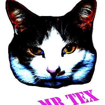 Mr Tex by pandorasboxphot