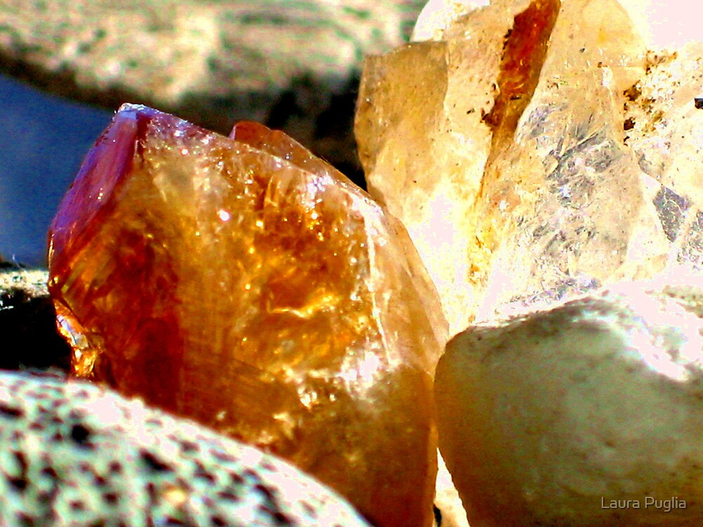 Diamonds in the Rough by Laura Puglia