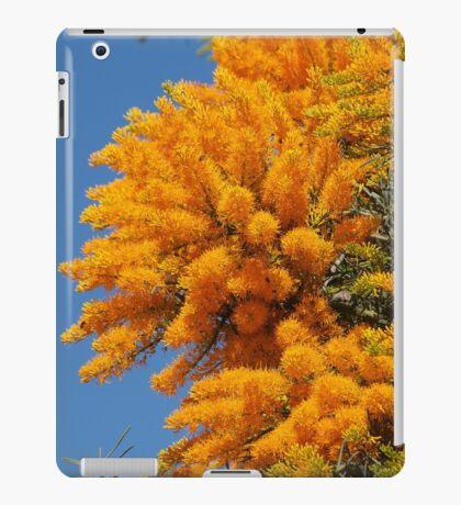 Nuytsia Bloom iPad Case/Skin