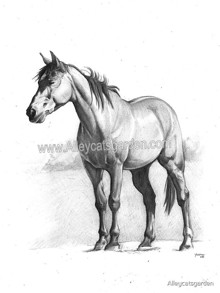 horsie black and white by Alleycatsgarden