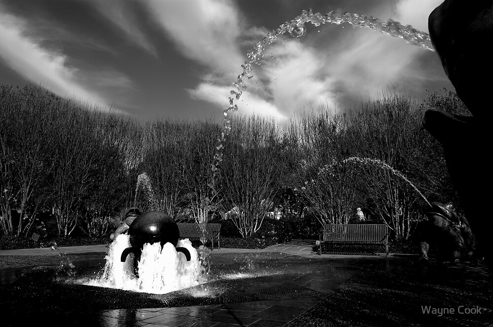 The Fountain by Wayne Cook