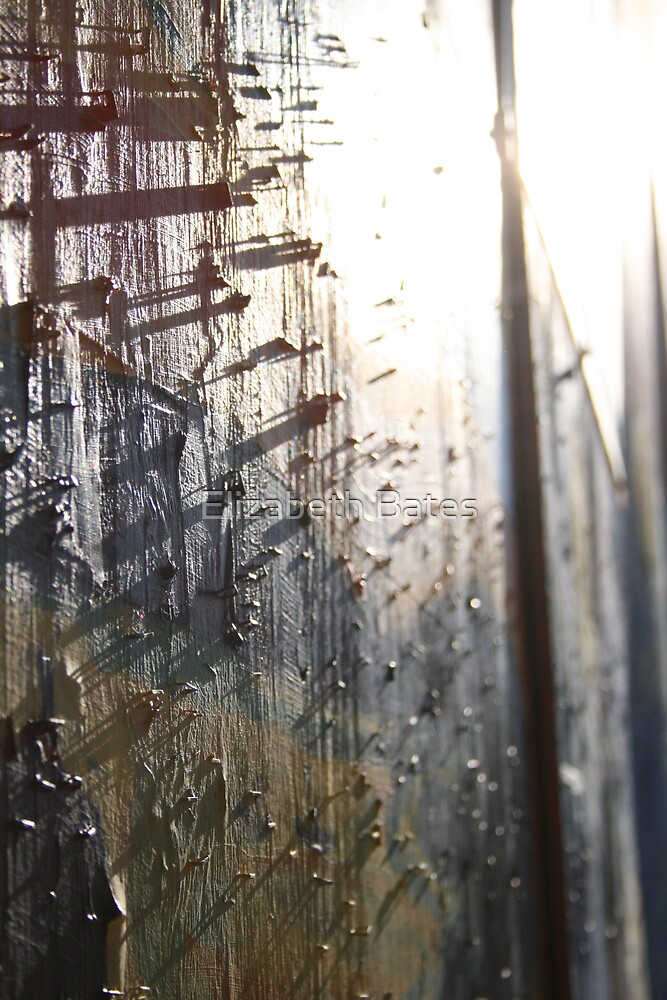 Light Filled Staples by Elizabeth Bates