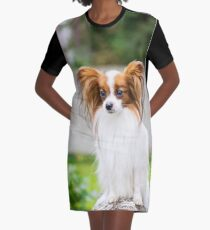 Portrait of a papillon purebreed dog  Graphic T-Shirt Dress