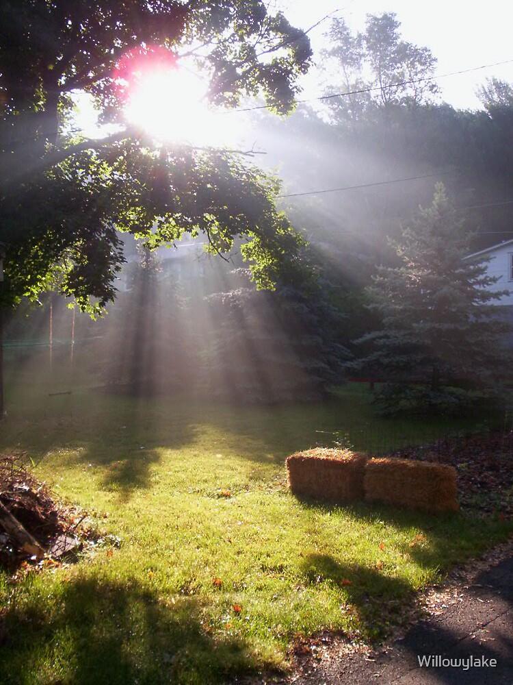 Early Morning Majesty 2 by Willowylake