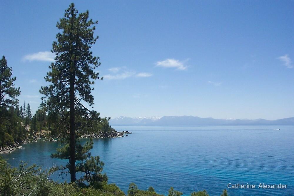 Lake Tahoe by Catherine  Alexander