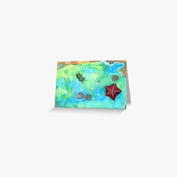Tide Pool #1 Greeting Card