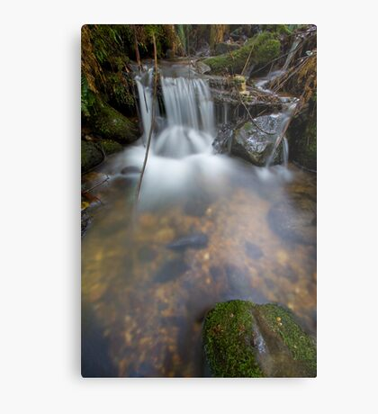 A Soothing Fall Metal Print