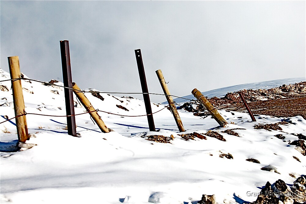 Snow fence by Grant Middleditch