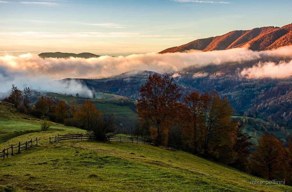 fence and trees on rural hillside meadow in fog by mike-pellinni