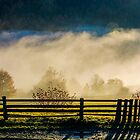 rural area on hillside in rising cloud at sunrise by mike-pellinni