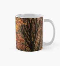 forest in golden brown foliage on sunny day Mug