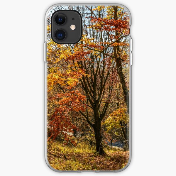 forest in golden brown foliage on sunny day iPhone Soft Case