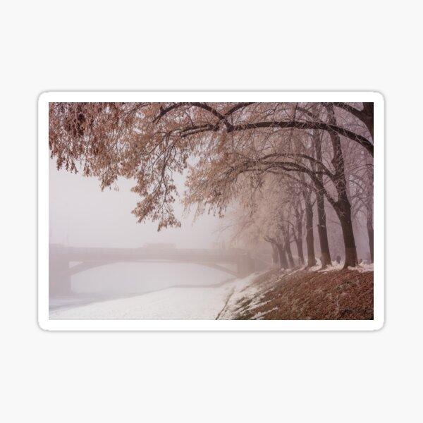 linden alley on winter foggy morning Sticker