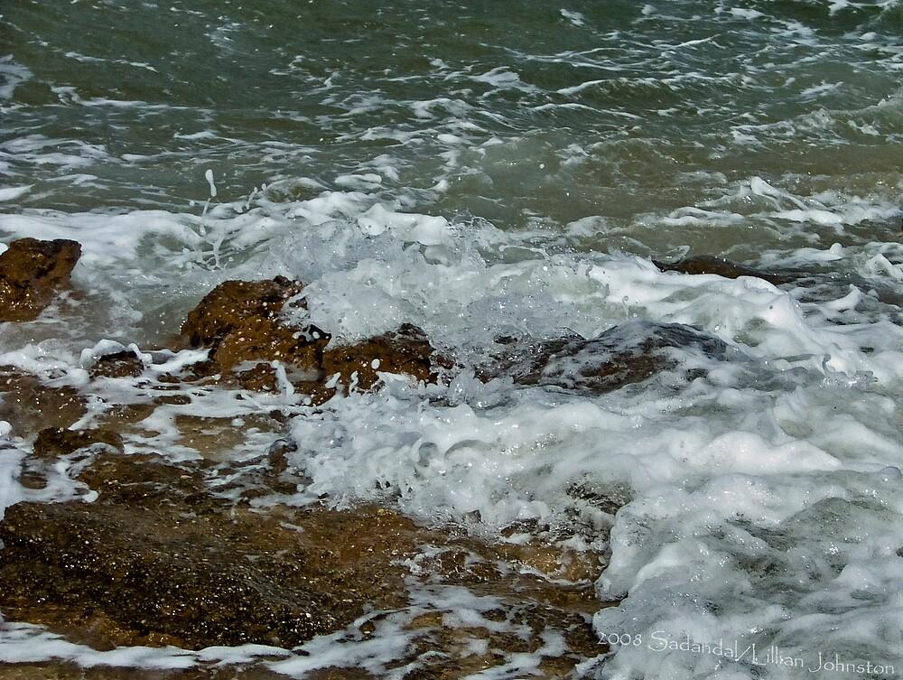 Wild Surf by Sadandal