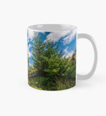 spruce trees on a slope under the blue sky Mug