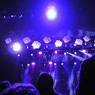 """""""Concert . . ."""" by lurline"""