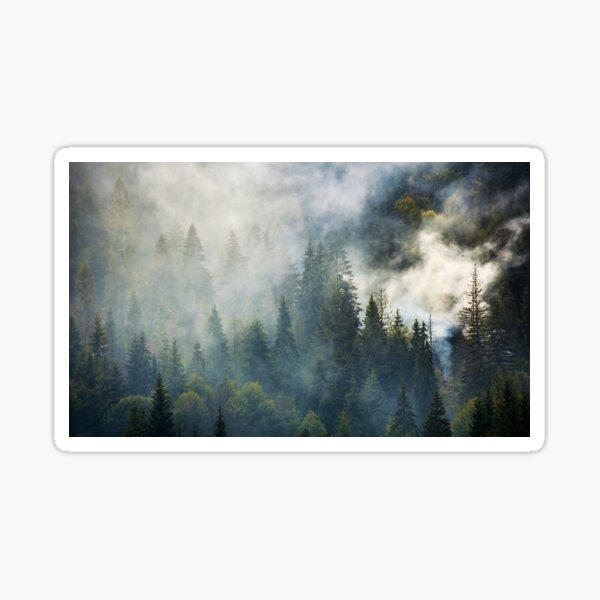 smoke rise above spruce forest Sticker