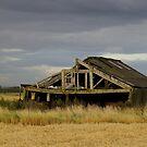 Old barn by Maureen Brittain