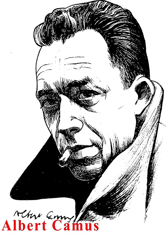 an overview of camus views on freedom and death in the stranger